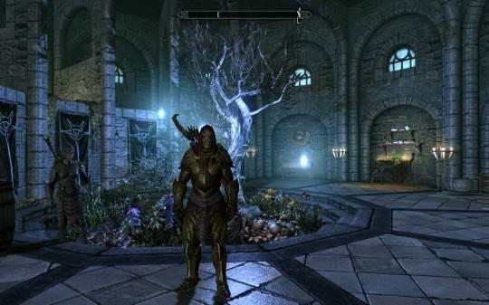The Elder Scrolls 5: Skyrim - Я в созданном своими руками эльфийском доспехе